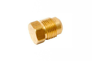 Brass bushes plugs