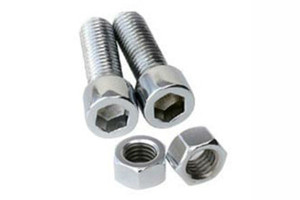 Stainless Steel Nuts Bolt