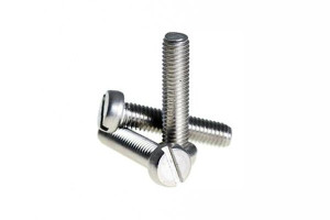 Stainless Steel Slotted Screws