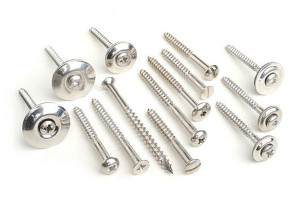 Stainless Steel Wood Screws