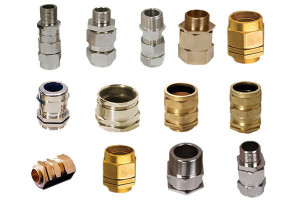 BW 2 Brass Cable Glands Part